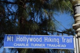 Mt Hollywood Hiking Trail